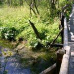 Naturlehrweg im Seebachtal