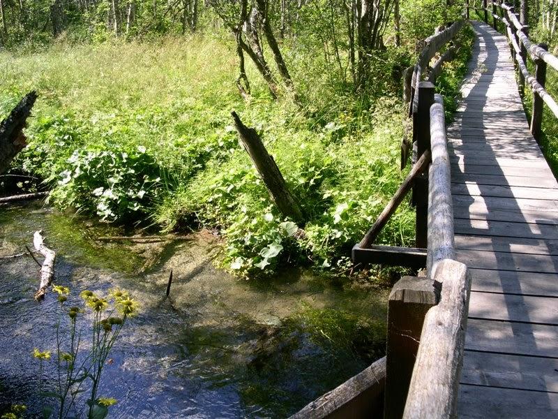 Naturlehrweg Seebachtal