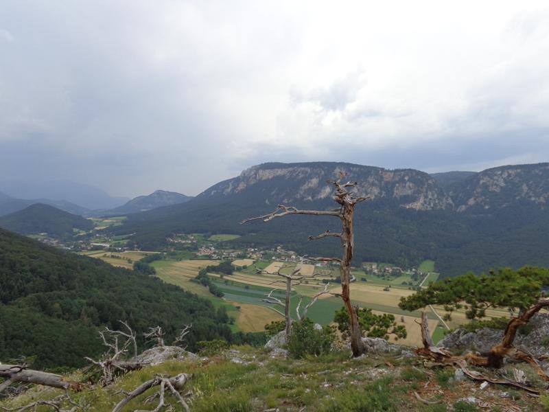 blick-auf-hohe-wand-vom-kienberg