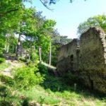 Ruine Kammerstein bei Perchtoldsdorf