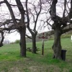 Rotes Kreuz bei Hundsheim