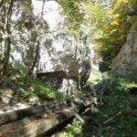 Die Holzriese in der Eng
